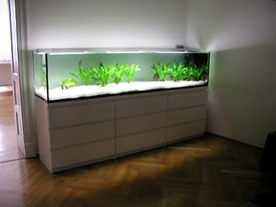 320 liter do it yourself einrichtung r ckwand steine etc seite 4 aquarium forum. Black Bedroom Furniture Sets. Home Design Ideas