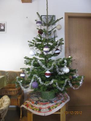wie schm ckt ihr euren weihnachtsbaum freizeitvergn gen forum. Black Bedroom Furniture Sets. Home Design Ideas