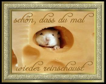 Insulintrennkost Schlank Schlaf Dr Pape Wochenende 03 04 11 2012 329290781