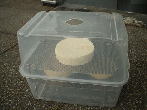 käse fetisch taschenmuschi selber bauen