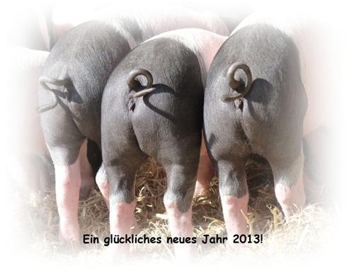 Gedichte und Sprüche am 1. Januar 2013 - Neujahr | Sonstiges ...